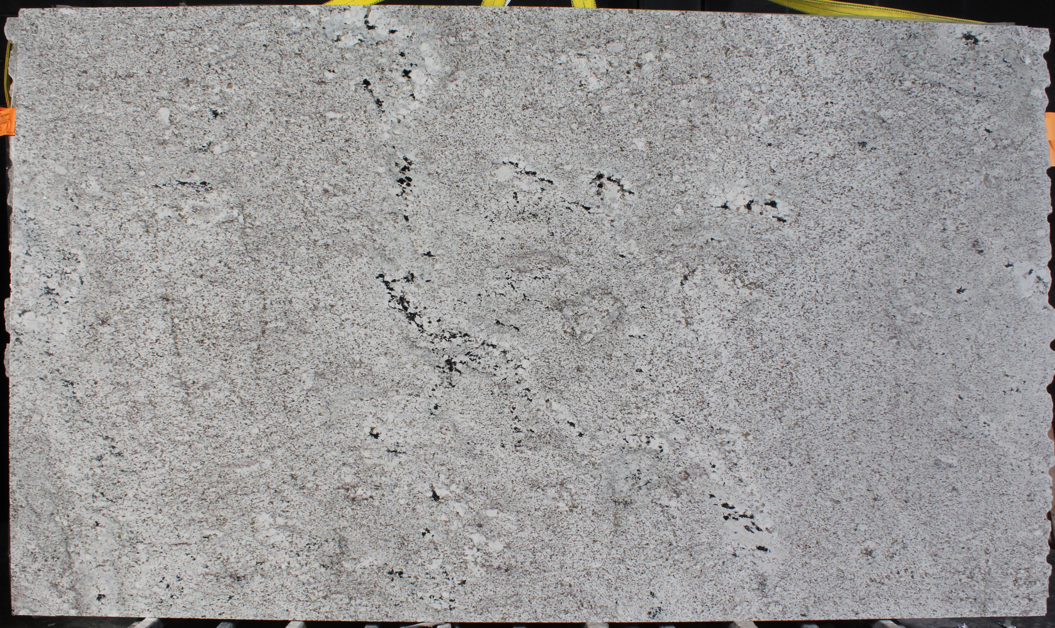 Stone Design Granite Absolute White